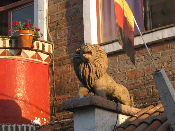 A fierce lion with a porch background.