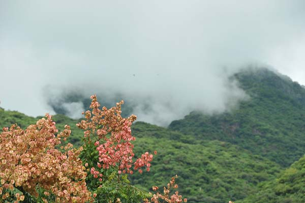 These are cloudes floating over the mountains as seen on one of our walks into the village proper.