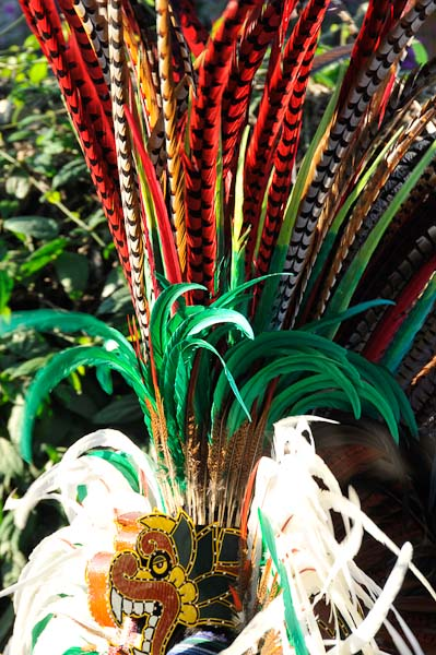 More feathers in many colors.